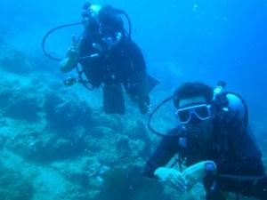 Diving Anilao