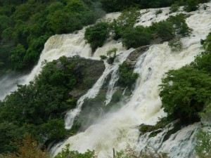 f5's first trip was to witness the beauty of Shivanasamudra